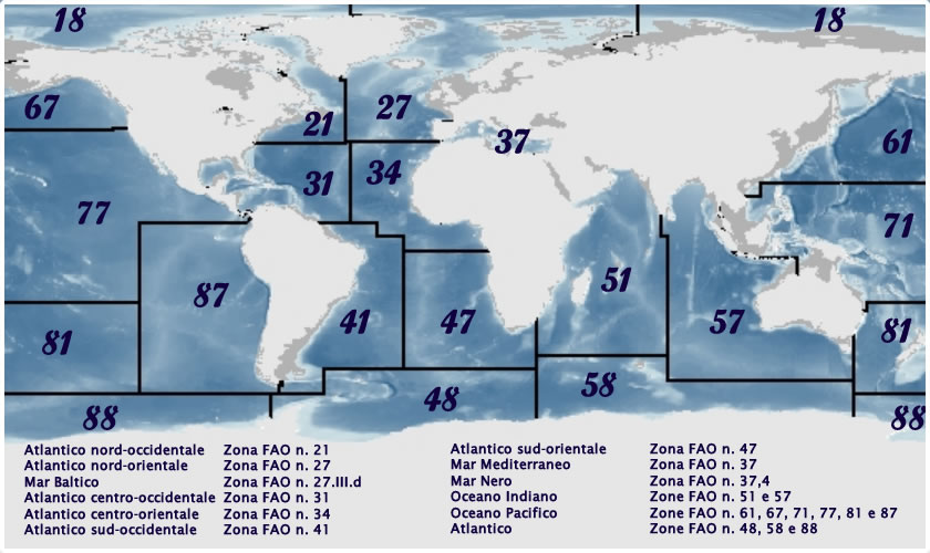mappa_zone_pesca_grande