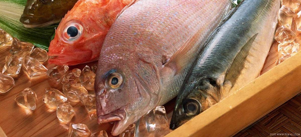 Market_Fresh_Fish_on_Ice